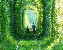 En Romantik Tren Yolu