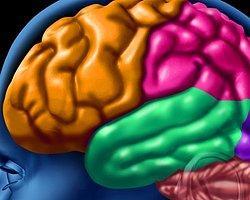 Fazla İnternet Beyne Zarar