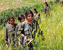 Devlet PKK'yı Anlattı!