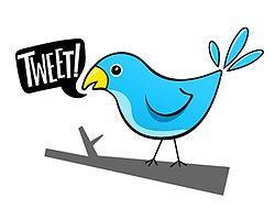 Online Yetişkinlerin %15′i Twitter Kullanıyor
