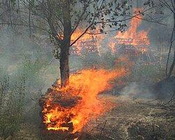 Bolu'da Yangın: Alevler Köyü Sardı
