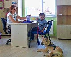Konuşamayan Çocuğa Köpekli Eğitim