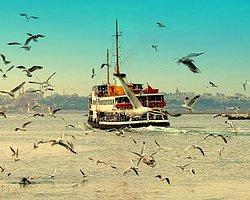 İstanbul'un Çocukları : İstanbul'da Sanat