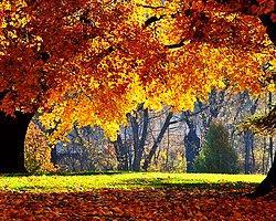 Bayramda Sonbahar Havası Yaşanacak