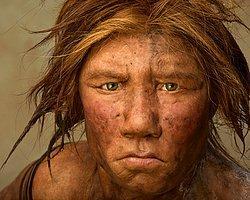 Neandertalleri Doğuracak Anne Arıyor
