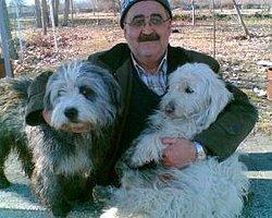 35 Yıllık Memurun Köpek Yüzünden Lojmandan Çıkarıldığı İddiası