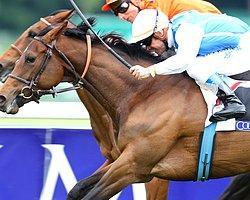 Longchamp G1 Koşularda Zafer Silasol ve Maxios'un