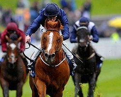 Investec Derby - Ruler Of The World