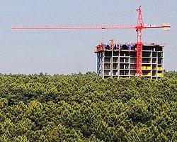 Belgrad Ormanları'na Da Rezidans Yapılacak