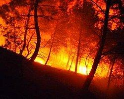 Osmaniye'de Korkutan Yangın