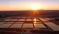 Apple Güneş Enerjili Tesis Kuracak