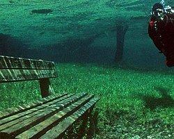 Yazın Göl, Kışın Park Oluyor