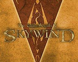Skywind'den Yeni Video