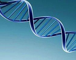 Türklerin Genetik Şifresi Çözüldü!