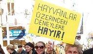 HAYVANLAR ÜZERİNDEKİ DENEYLERE HAYIR!