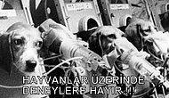 DENEY İŞKENCECİLERİNE DUR DEMEK İÇİN PAYLAŞIN!