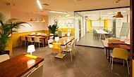 Cafe Ofisler Hakkında Bilgi