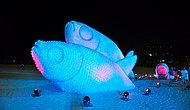 Plastik Su Şişelerinden Yapılmış Dev Balıklar