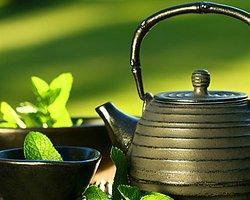 Çay Ağacı Yağının Cilde Faydaları