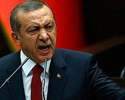 Erdoğan Türkiye'nin Führer'i