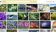 Yandex'te Görseller Artık Daha Kolay Bulunuyor