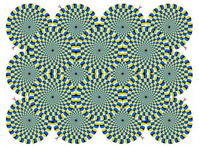 15. Akiyoshi Kitaoka geometrik şekillerden oluşur, hareket yanılsamasını meydana getirmek için ise parlaklığı ve renkleri kullanır. Aslında resim hareket etmiyor, bu sadece beynimizin bir oyunu