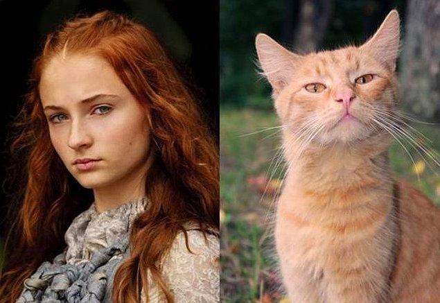 7. Sansa Stark