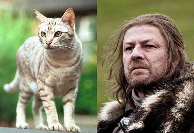17. Ned Stark