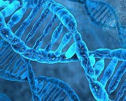 'İlk Canlılardan Önce DNA Vardı'