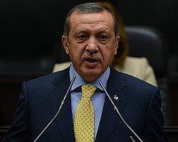 'Gezi'ciler Taksim ve Beşiktaş'ta Ağaç Katliamı Yaptı'