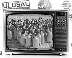 'Penguen' Yayıncılığı En Çok NTV ve Habertürk'ü Vurdu