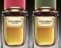Dolce&Gabbana'dan İki Yeni Velvet