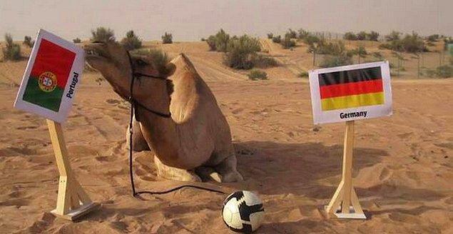 19. Cezayir, İran taraflarına gitmişken kaybedeni bilen deveden söz etmeden olmazdı.
