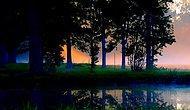 """Doğanın """"Sessizliği"""" Anlattığı 32 Fotoğraf"""