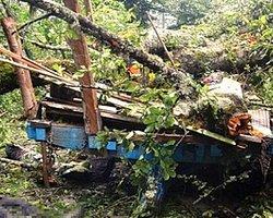 Şiddetli Rüzgârdan Ağaç Devrildi: 6 İşçi Öldü