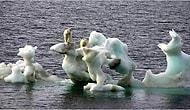 İklim Değişikliği ve Kuraklığın Tüm Dünyayı Etkilediğinin İspatı 22 Fotoğraf