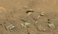 'Mars'ta Kalça Kemiği' İddiası