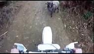 Yol Vermeyen Psikopat Keçi ve Motorcu