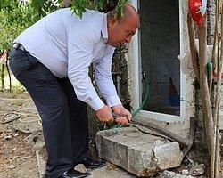 2 Bin Yıllık Mezar Taşı Tuvalete Giriş Basamağı Oldu