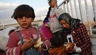 11 Soruda Kobani'de Neler Oluyor?