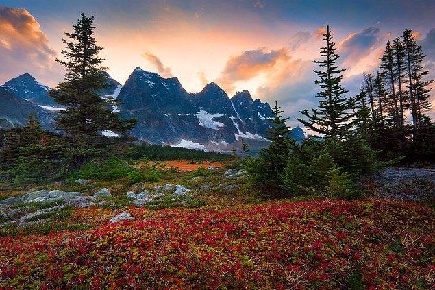 35. Tonquin Valley, Canadian Rockies, Alberta, Kanada