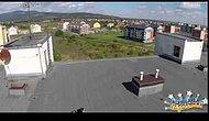 Çatıda Güneşlenen Hatunu Helikopter ile Dikizlemek