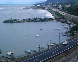 'Karadeniz'de Kıyıların Doldurulması Tüm Canlı Türlerini Olumsuz Etkiliyor'