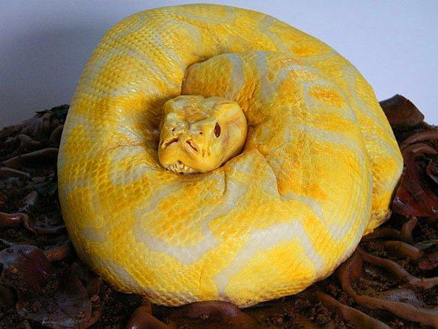 4. Yılanlı pasta