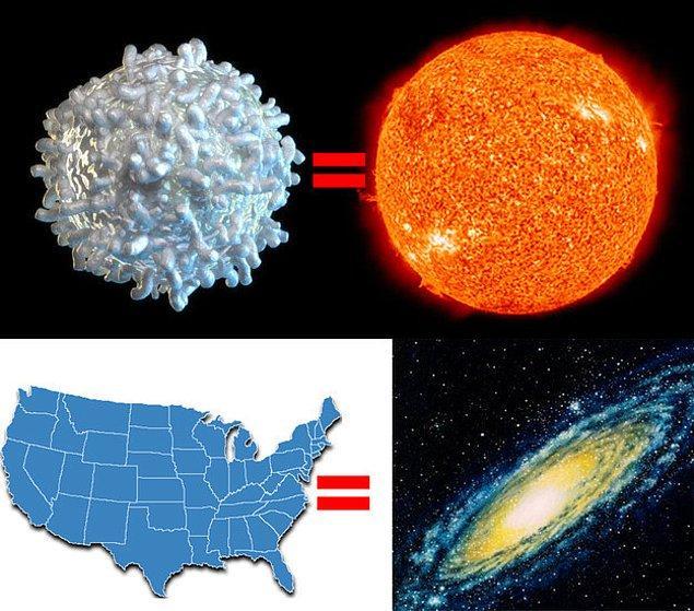 19. Yine de bütün bunlar bir galaksiyle karşılaştırıldığına hiçbir şeydir.
