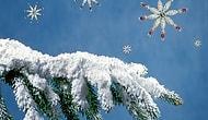 Görür Görmez Uygulamak İsteyeceğiniz 13 Farklı Yılbaşı Ağacı Süslemesi