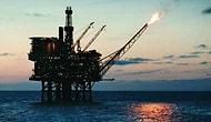 TPAO Özelleştiriliyor, Petrol-İş Tepkili