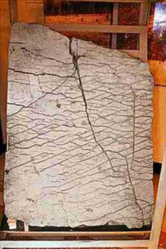 10. 120 Milyon Yıllık Harita