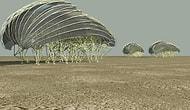 Rüzgarda Yürüyen Mühendislik Harikaları