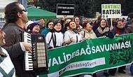 Yırca'dan Bozcaada'ya Binlerce Kişi, Doğa İçin Kadıköy'de Toplandı